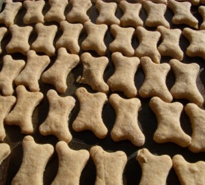 Vegan peanut butter dog biscuits, ready for the oven!